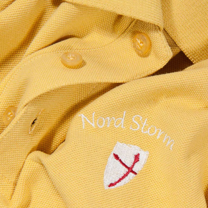 Футболка POLO CLASSIC COLLECTION Nord Storm